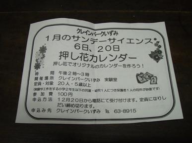 P1146105.jpg