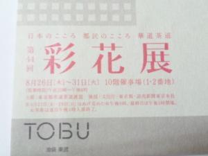 SH3I0080.jpg
