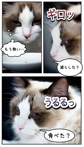 100331_8.jpg