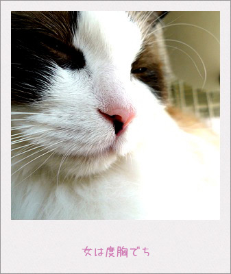 20100625_3.jpg