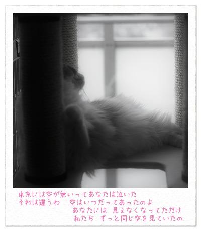 20100813_3.jpg