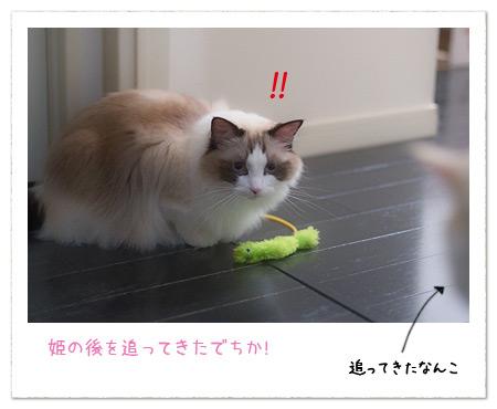 20100915_2.jpg