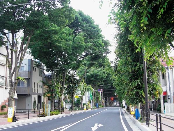 Green Street5
