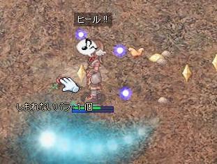 2009,12,23しおバラ2