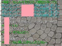 2009,12,31買い物