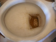 ハウスクリーニング・Hトイレ1