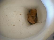 ハウスクリーニング・Hトイレ2