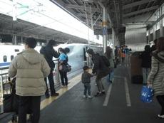 新幹線さくら3