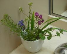 ハウスクリーニング・トイレの花