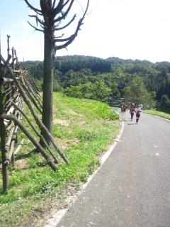 keitaigazou_0034.jpg