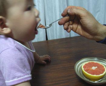 20110621グレープフルーツ