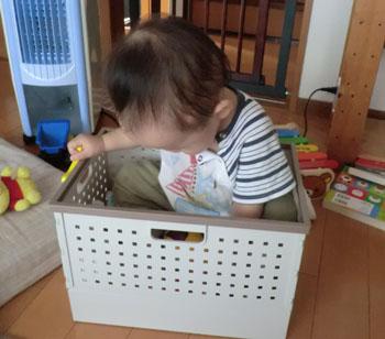 20110902おもちゃ箱とharu