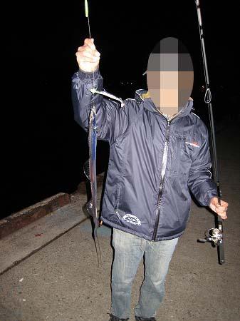 2009/11/18SIRさん太刀魚1
