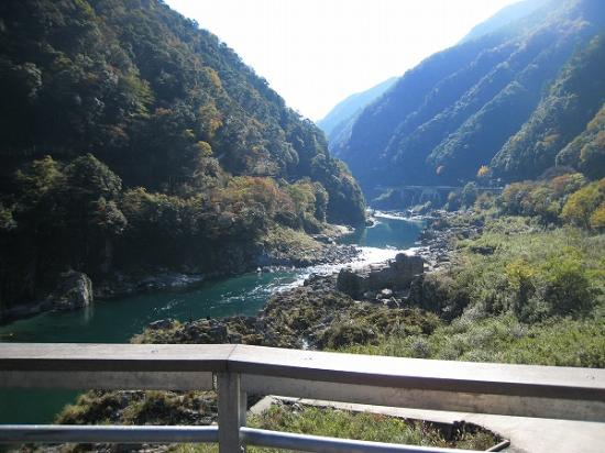 2009/11/23West-West紅葉1