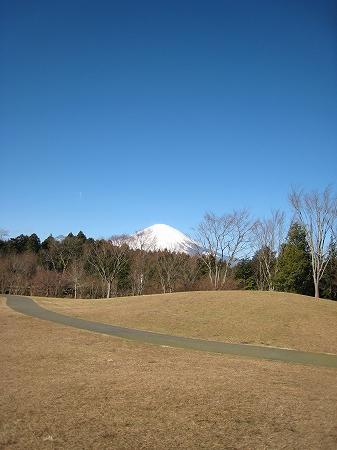 2010/01/02富士山朝