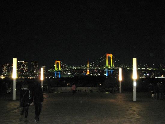 2010/01/02お台場ベイブリッジ夜景2