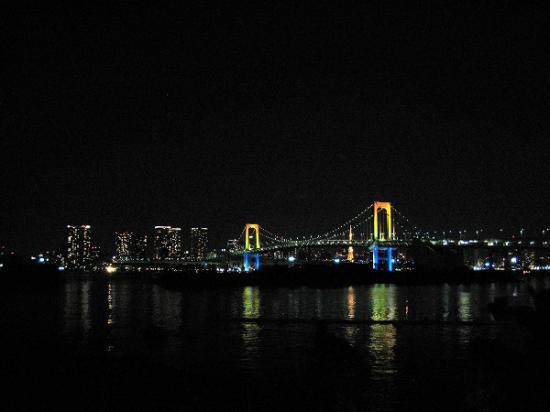 2010/01/02お台場ベイブリッジ夜景4