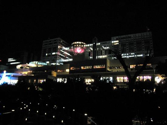 2010/01/02お台場ベイブリッジ夜景噴水ショー1