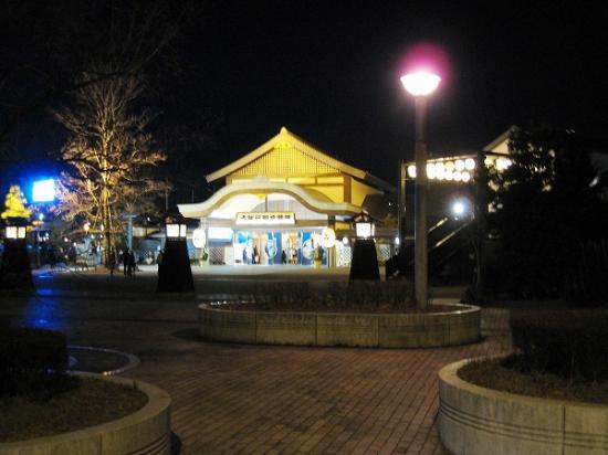 2010/01/02東京・お台場大江戸温泉物語