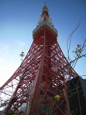 2010/01/03東京タワー3
