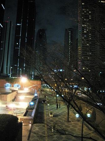 2010/01/03新宿ビル群4