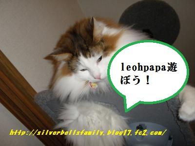 P2010009.jpg