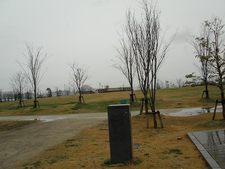 P3070014.jpg