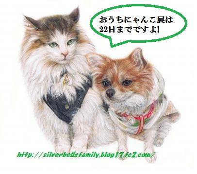 reoribonchan2.jpg