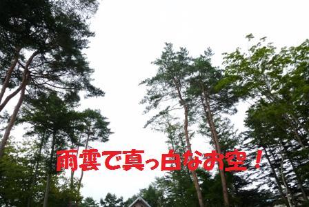 P1080076.jpg