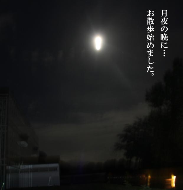 001_20110713111854.jpg