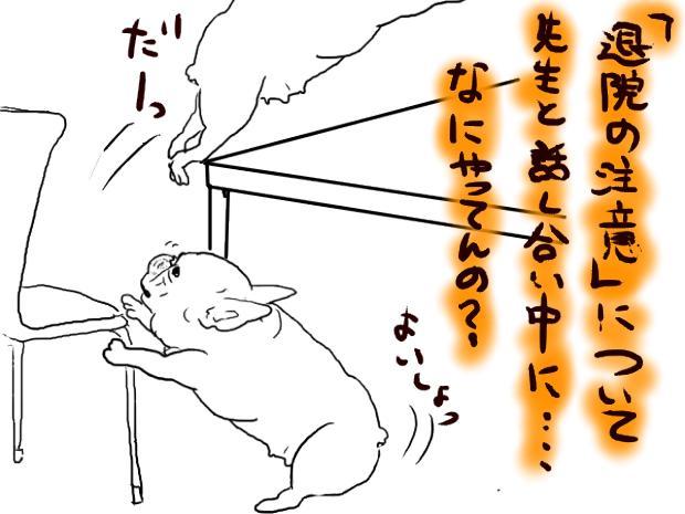 001_20111109021800.jpg