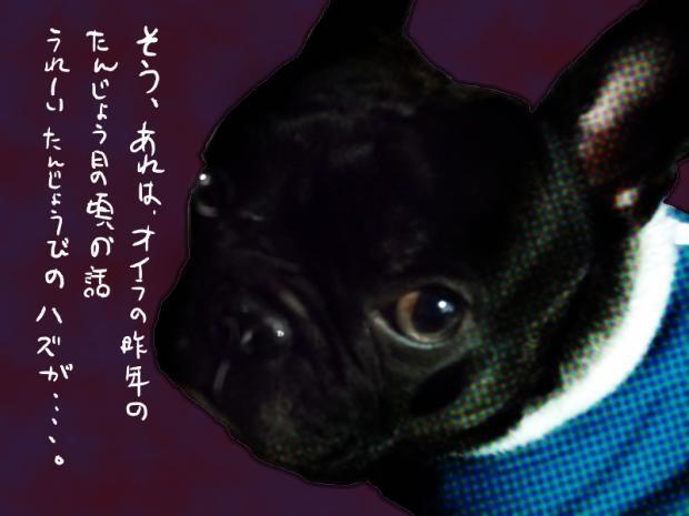 01_20110504235442.jpg