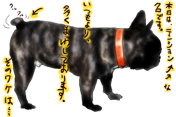 01_20110509002530.jpg