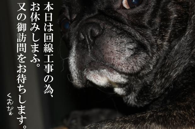 01_20110618034259.jpg