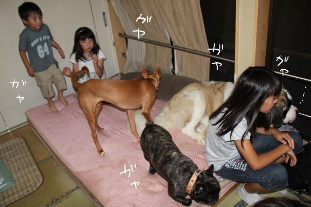 01_20110620041417.jpg