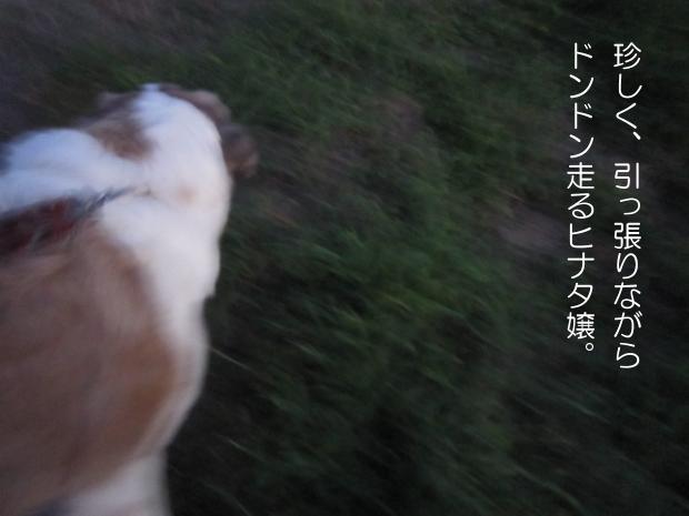 01_20110912014010.jpg