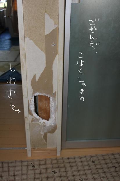 01_20110914231722.jpg