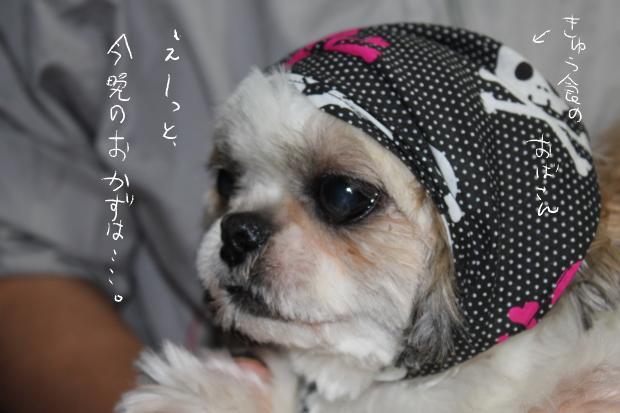 01_20111003233127.jpg