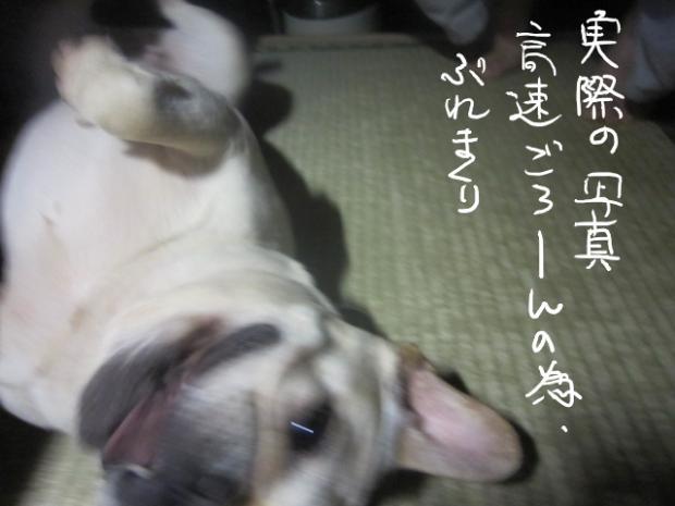 02_20110508002345.jpg