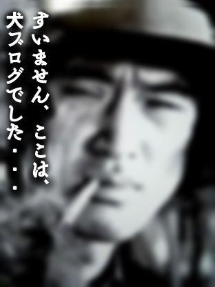 02_20110514020949.jpg
