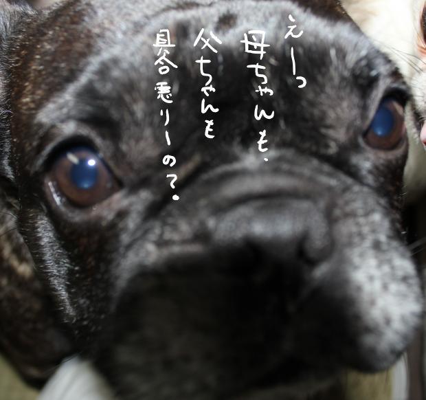 02_20110524214834.jpg