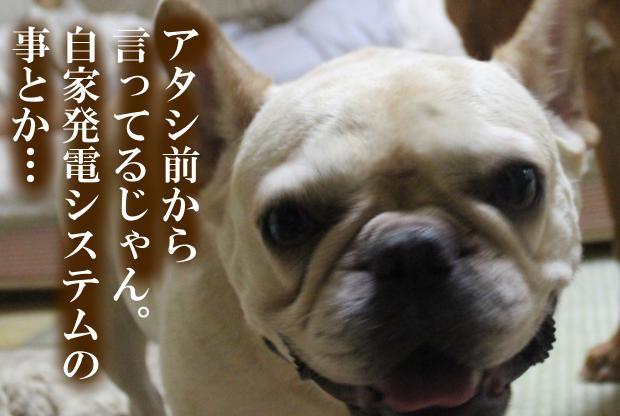 02_20110615014730.jpg
