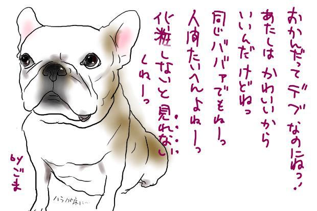 02_20111019020732.jpg