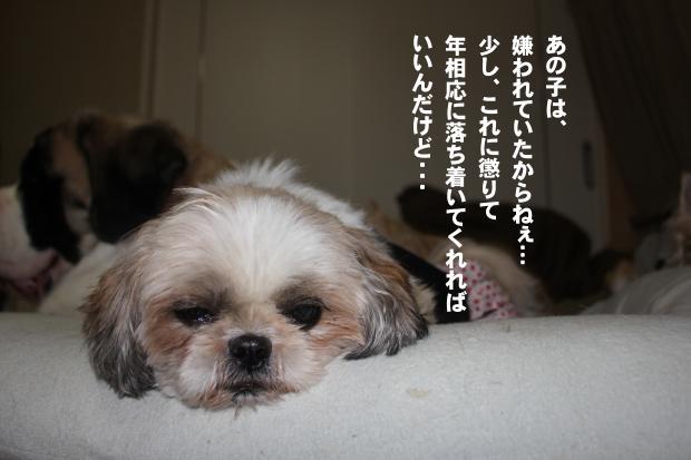 02_20111105225509.jpg