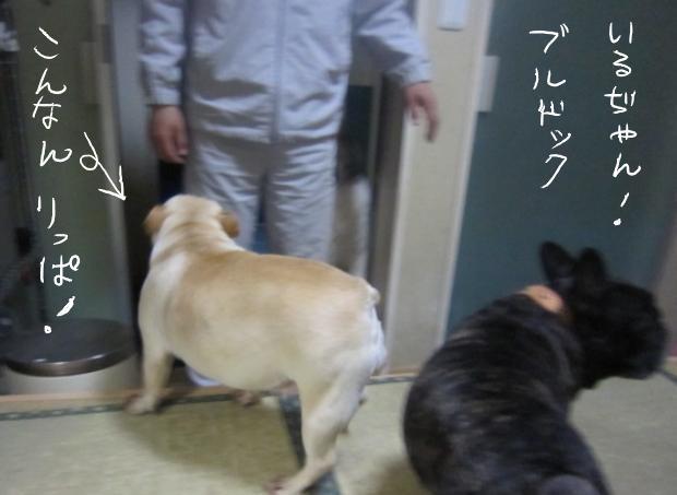 03_20110507022417.jpg