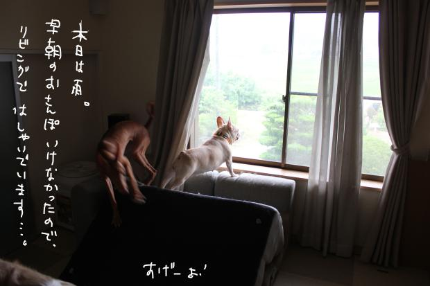 03_20110802090751.jpg
