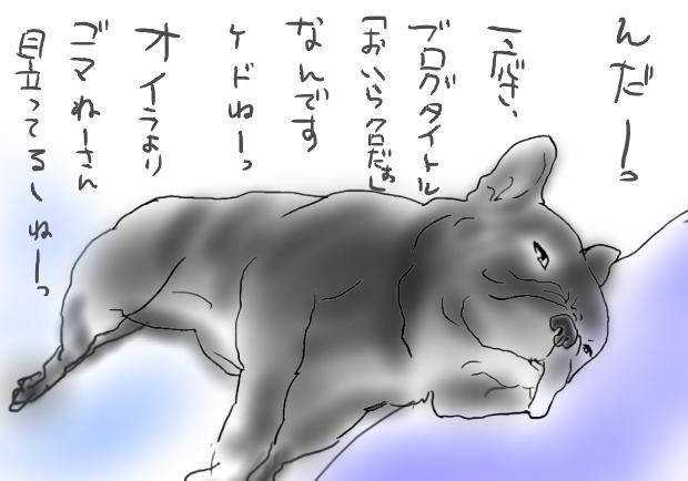 03_20110812141142.jpg