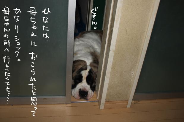 03_20110818224425.jpg