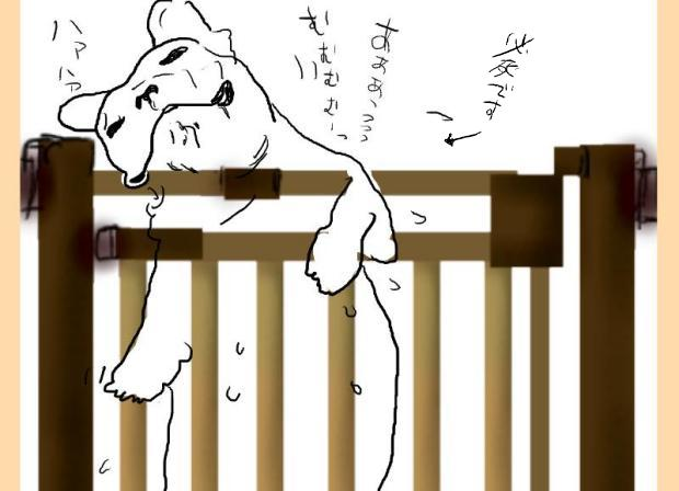 03_20111005171450.jpg