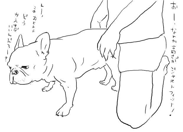 03_20111018014527.jpg
